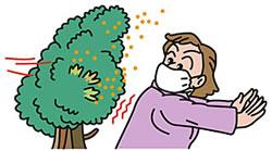 花粉症と肌のトラブルの関係